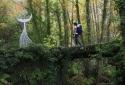 Art and wildlife walking tours